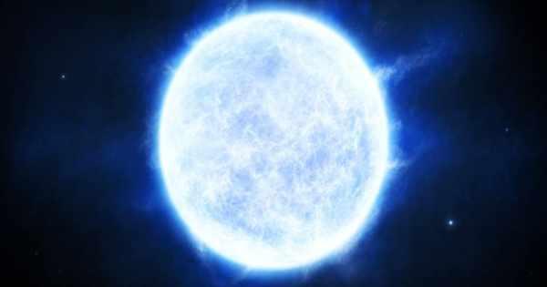 R136a1 – a Massive Wolf–Rayet Star