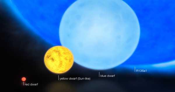 R136c – a Wolf–Rayet Star