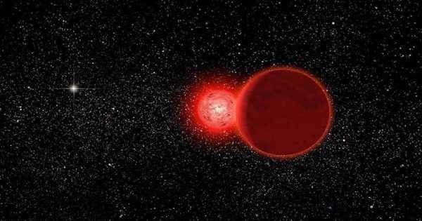 Scholz's Star – a Binary Stellar System in the Constellation Monoceros
