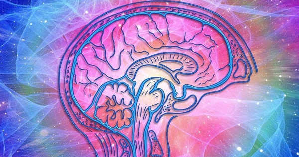 Scientists Improved Treatment of Brain Dysfunction for Psychosis Sufferers
