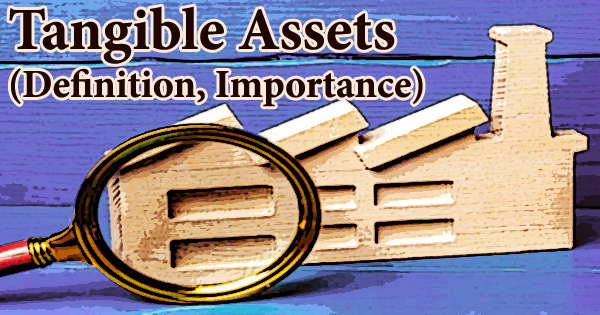Tangible Assets (Definition, Importance)