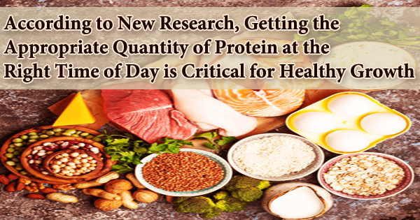 According to New Research, Getting the Appropriate Quantity of Protein at the Right Time of Day is Critical for Healthy Growth