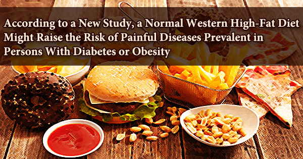 According to a New Study, a Normal Western High-Fat Diet Might Raise the Risk of Painful Diseases Prevalent in Persons With Diabetes or Obesity