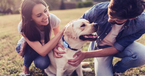 Brazil's Petlove raises $150M from Riverwood, SoftBank to Sell Pet Products and Services Online