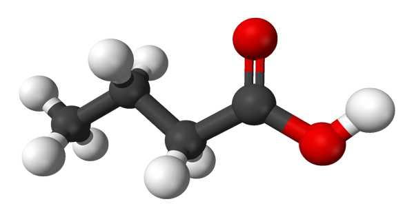 Butyric Acid – a Straight-chain Alkyl Carboxylic Acid