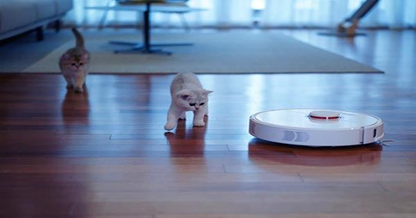 """Roomba's New Design Update should Help Pet Owners Avoid A """"Pooptastrophe"""""""