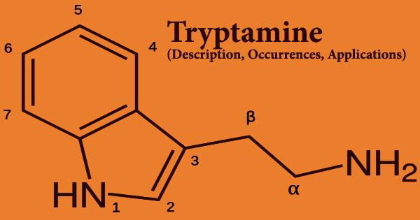 Tryptamine (Description, Occurrences, Applications)