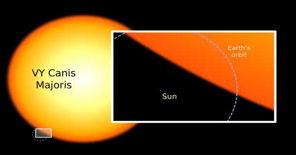 VY Canis Majoris – a Red Hypergiant Star in the Constellation Canis Major